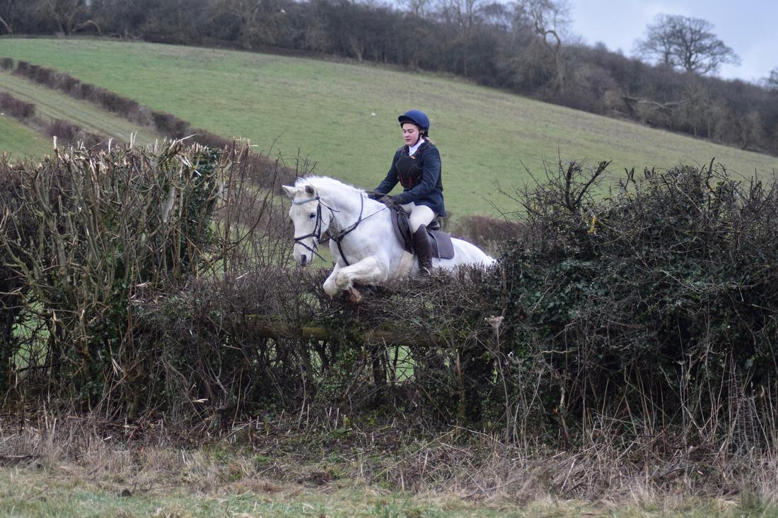 Equipassion UK | EVENT REPORT - WDHC Mock Hunt 27th January 2018